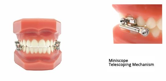 miniscope